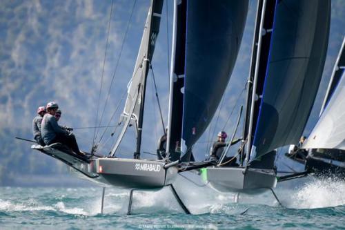 NATÜRLICHES EINTAUCHEN - im Wald mit allen Sinnen